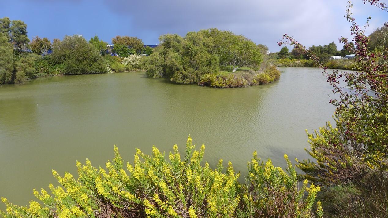 Terrain compartiment 'poissons', Tasdon